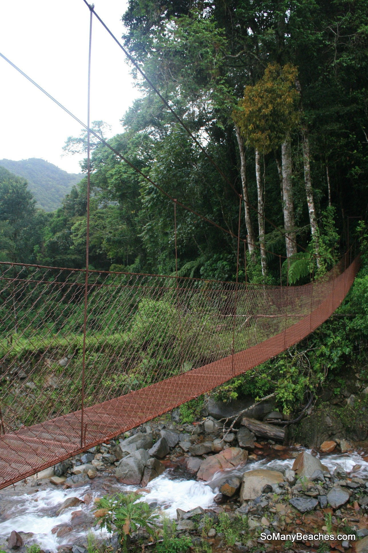 suspension bridge at Boquete Tree Trek